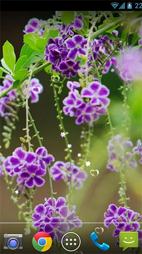 Download Lavender by orchid - livewallpaper for Android. Lavender by orchid apk - free download.