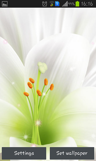 Download Lily - livewallpaper for Android. Lily apk - free download.