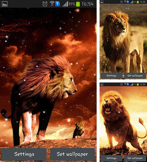 In addition to live wallpaper Deadpool for Android phones and tablets, you can also download Lion for free.