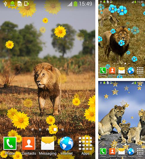 In addition to live wallpaper Winter by jelkesoftware for Android phones and tablets, you can also download Lion by Live Wallpapers Free for free.