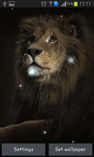 Screenshots of the Lions for Android tablet, phone.