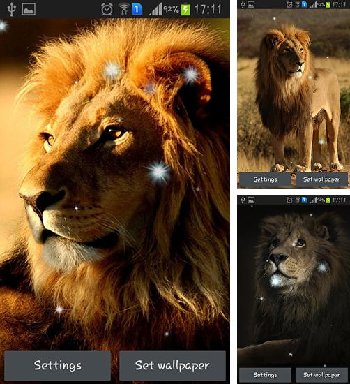 In addition to live wallpaper Hearts by Mariux for Android phones and tablets, you can also download Lions for free.