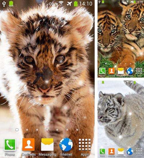 In addition to live wallpaper Christmas night for Android phones and tablets, you can also download Little tiger for free.