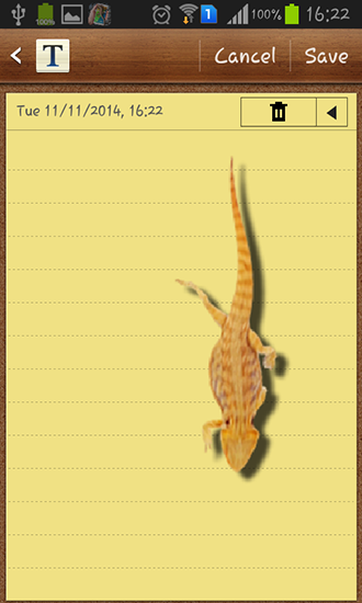 Screenshots of the Lizard in phone for Android tablet, phone.