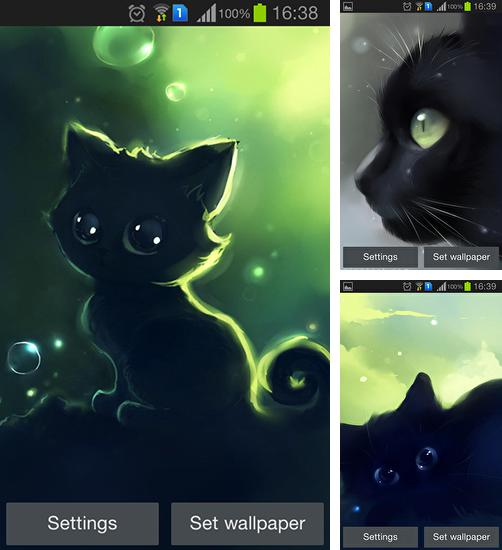 In addition to live wallpaper Pink flowers for Android phones and tablets, you can also download Lonely black kitty for free.
