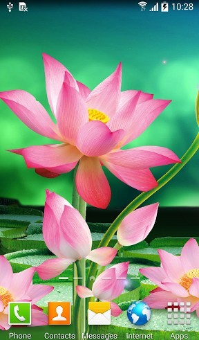 Lotus Live Wallpaper For Android Lotus Free Download For Tablet And