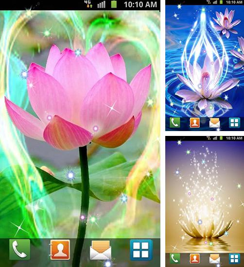 In addition to live wallpaper Peacocks for Android phones and tablets, you can also download Lotus by Venkateshwara apps for free.