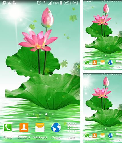 Kostenloses Android-Live Wallpaper Lotus. Vollversion der Android-apk-App Lotus by villeHugh für Tablets und Telefone.