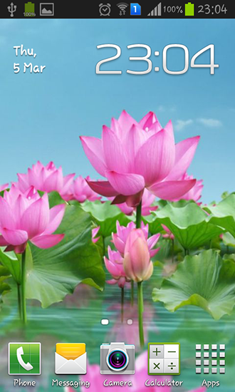 Lotus ponds in summer lotus pond creative image_picture free.