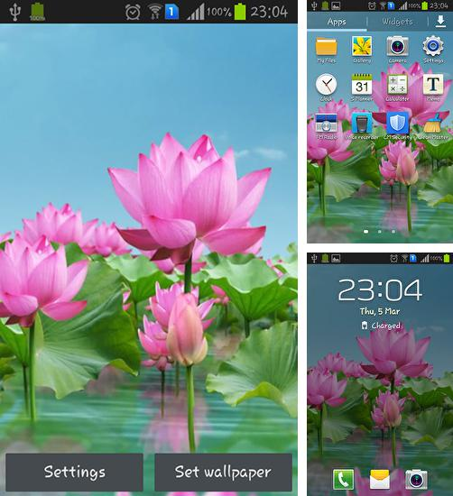 In addition to live wallpaper Candle for Android phones and tablets, you can also download Lotus pond for free.
