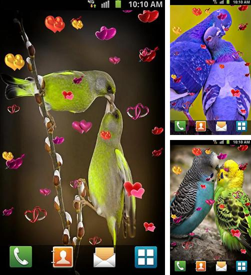 In addition to live wallpaper Snowy Christmas tree HD for Android phones and tablets, you can also download Love: Birds for free.