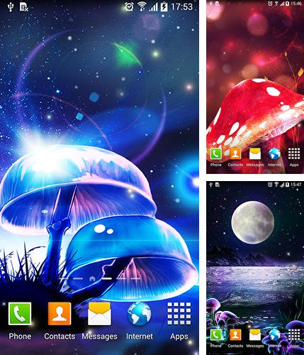 In addition to live wallpaper Star light for Android phones and tablets, you can also download Magic mushroom for free.