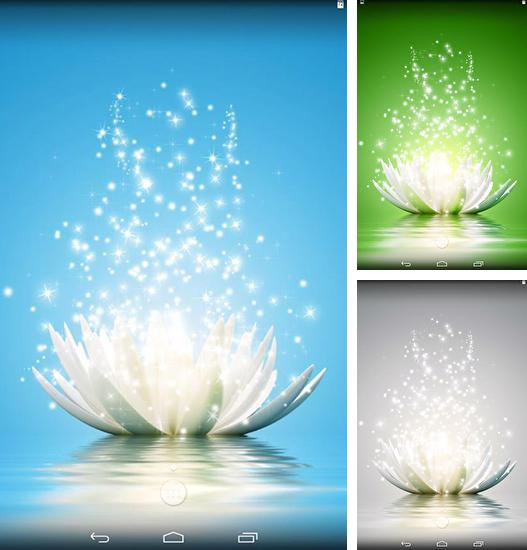 In addition to live wallpaper Moto maxx for Android phones and tablets, you can also download Magic water lilies for free.