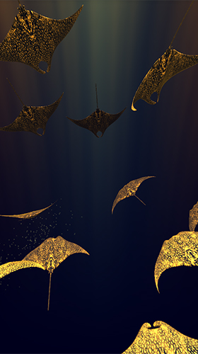 Screenshots of the Mantaray for Android tablet, phone.
