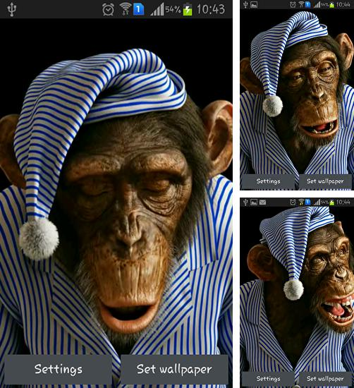 In addition to live wallpaper Sailboat for Android phones and tablets, you can also download Monkey 3D for free.