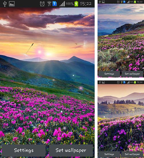 In addition to live wallpaper Chameleon Color Adapting for Android phones and tablets, you can also download Mountain flower for free.
