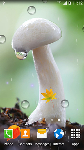 Screenshots von Mushrooms by BlackBird Wallpapers für Android-Tablet, Smartphone.