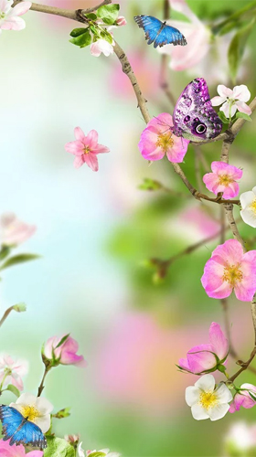 Download Natural flowers - livewallpaper for Android. Natural flowers apk - free download.