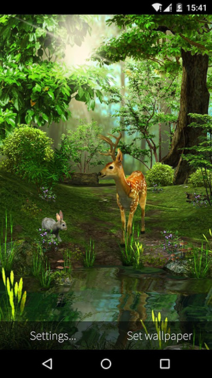 Nature 3D live wallpaper for Android. Nature 3D free download for
