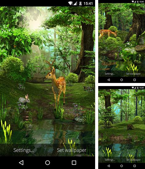 In addition to live wallpaper Rock by Cute Live Wallpapers And Backgrounds for Android phones and tablets, you can also download Nature 3D for free.