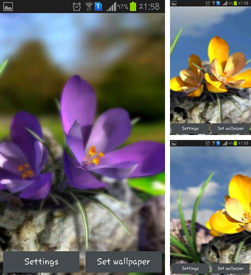 In addition to live wallpaper Galaxy by Wasabi for Android phones and tablets, you can also download Nature live: Spring flowers 3D for free.