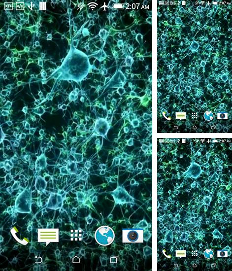 Download live wallpaper Neuron for Android. Get full version of Android apk livewallpaper Neuron for tablet and phone.