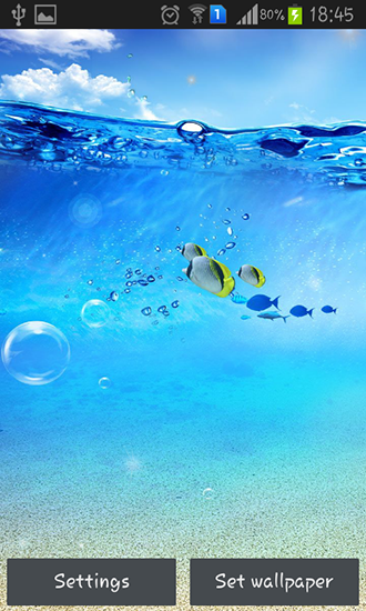 Download livewallpaper Ocean for Android. Get full version of Android apk livewallpaper Ocean for tablet and phone.