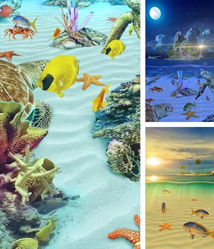 Download live wallpaper Ocean Aquarium 3D: Turtle Isles for Android. Get full version of Android apk livewallpaper Ocean Aquarium 3D: Turtle Isles for tablet and phone.
