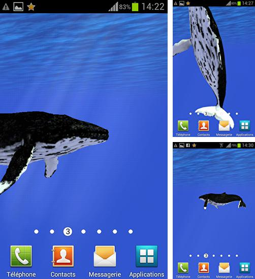 In addition to live wallpaper Oriental for Android phones and tablets, you can also download Ocean: Whale for free.