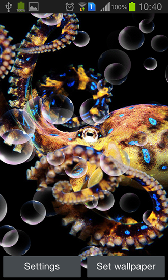 Download livewallpaper Octopus for Android. Get full version of Android apk livewallpaper Octopus for tablet and phone.
