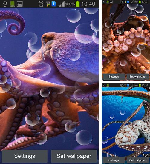 In addition to live wallpaper Nature by Creative Factory Wallpapers for Android phones and tablets, you can also download Octopus for free.
