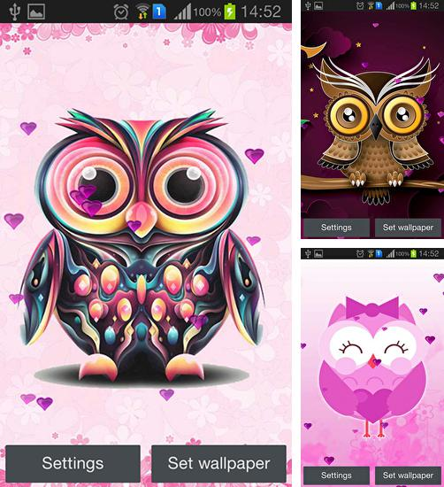 In addition to live wallpaper Apple frog for Android phones and tablets, you can also download Owl for free.