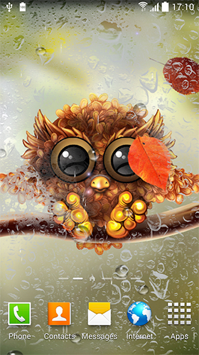 Owl by Live Wallpapers 3D