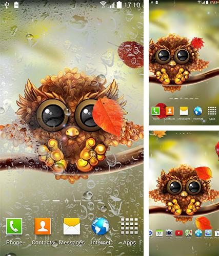 Download live wallpaper Owl by Live Wallpapers 3D for Android. Get full version of Android apk livewallpaper Owl by Live Wallpapers 3D for tablet and phone.