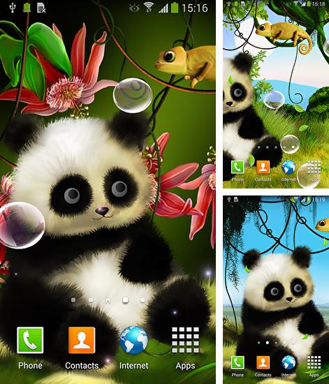 Download live wallpaper Panda by Live wallpapers 3D for Android. Get full version of Android apk livewallpaper Panda by Live wallpapers 3D for tablet and phone.