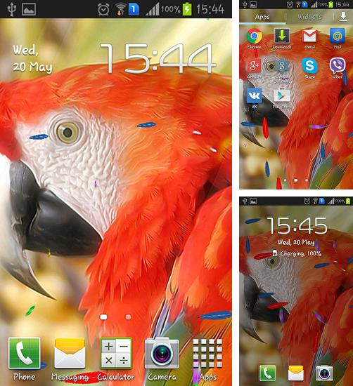 In addition to live wallpaper Books for Android phones and tablets, you can also download Parrot by TTR for free.