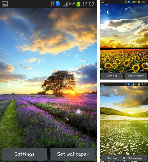 In addition to live wallpaper Forest flowers for Android phones and tablets, you can also download Perfect sunset for free.