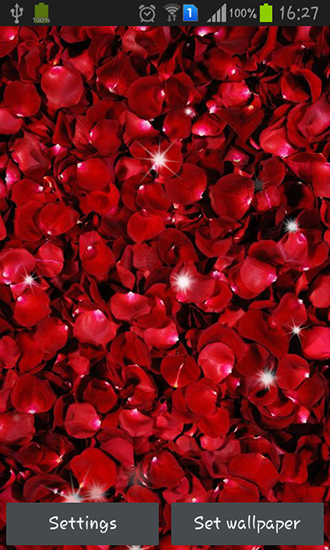 Petals Live Wallpaper For Android Petals Free Download For Tablet