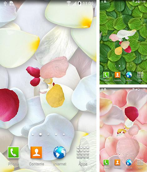 In addition to live wallpaper Aircraft for Android phones and tablets, you can also download Petals 3D by Blackbird wallpapers for free.