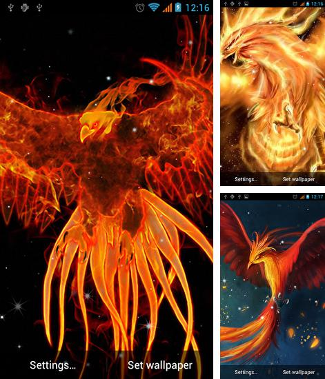 In addition to live wallpaper Cat clock for Android phones and tablets, you can also download Phoenix for free.