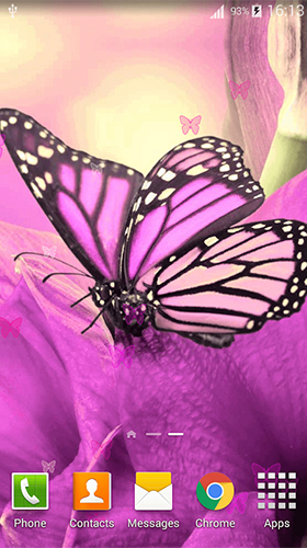 Геймплей Pink butterfly by Dream World HD Live Wallpapers для Android телефона.