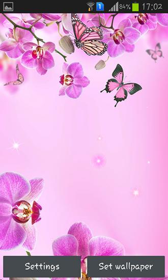 Descargar Pink Flowers Para Android Gratis El Fondo De Pantalla