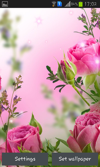 Download livewallpaper Pink flowers for Android. Get full version of Android apk livewallpaper Pink flowers for tablet and phone.