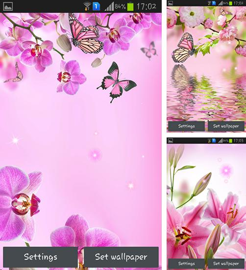 In addition to live wallpaper Glass for Android phones and tablets, you can also download Pink flowers for free.