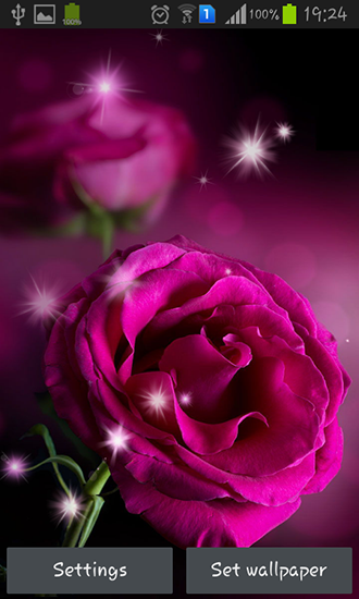 Download livewallpaper Pink roses for Android. Get full version of Android apk livewallpaper Pink roses for tablet and phone.