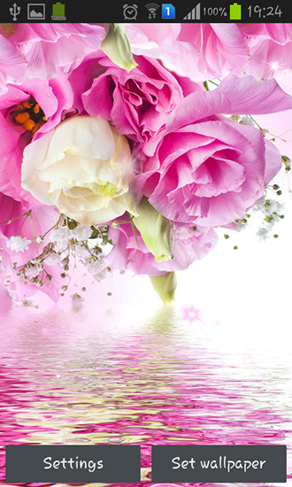 Screenshots of the Pink roses for Android tablet, phone.