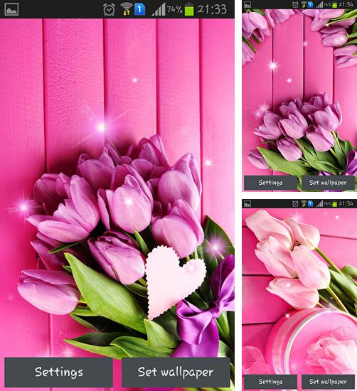 In addition to live wallpaper Venice for Android phones and tablets, you can also download Pink tulips for free.