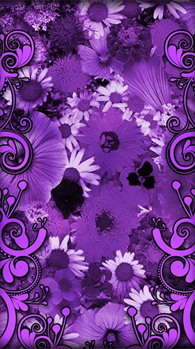Screenshots von Purple flowers für Android-Tablet, Smartphone.