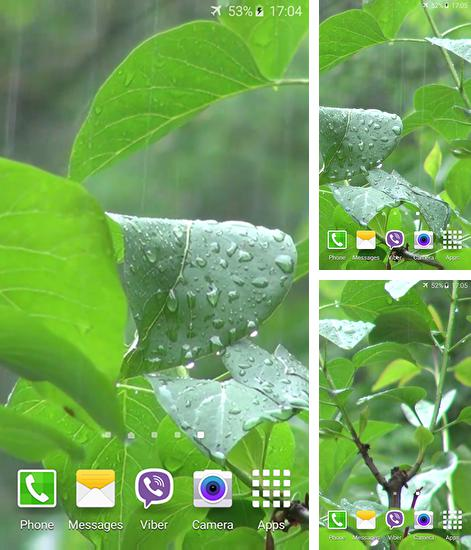 In addition to live wallpaper Water drops by ZT.art for Android phones and tablets, you can also download Rainstorm for free.