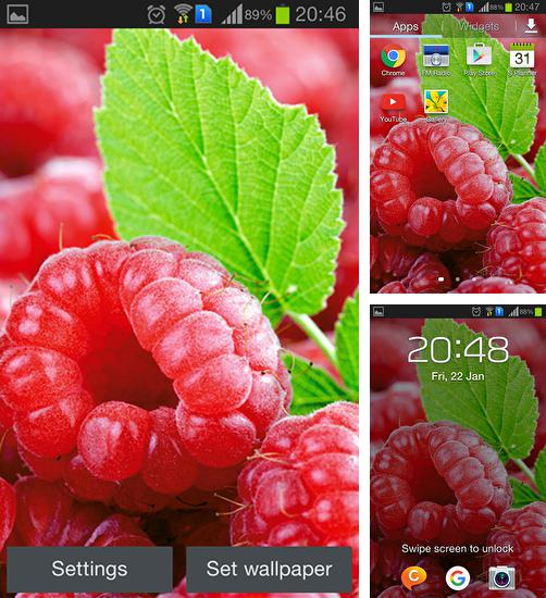 In addition to live wallpaper Device info for Android phones and tablets, you can also download Raspberries for free.